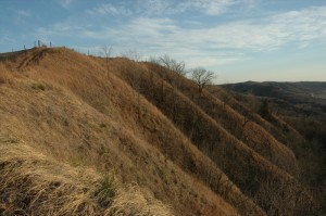 The Loess Hills, as seen in the winter (Photo by Flickr user Ford Ranger via CC BY-ND 2.0 >>)